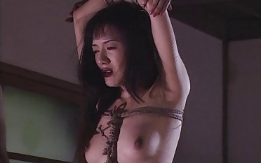 Tied up Japanese babe gets fucked by her oddball lover. HD video