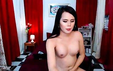 Transsexual Tastic Asian Ladyboys